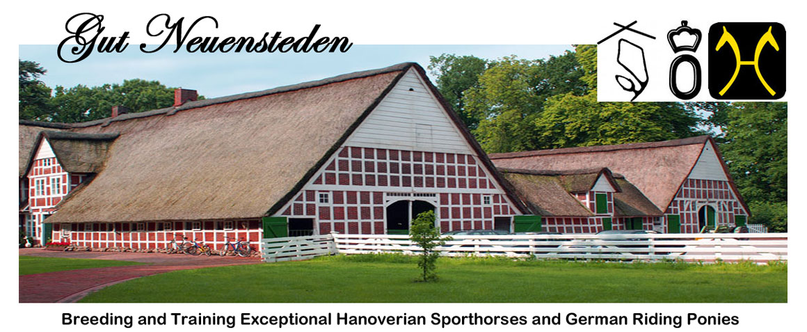 Gut Neuensteden - Hanoverian Breeding Farm